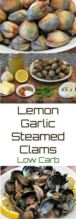 Lemon Garlic Steamed Clams | Peace love and Low Carb