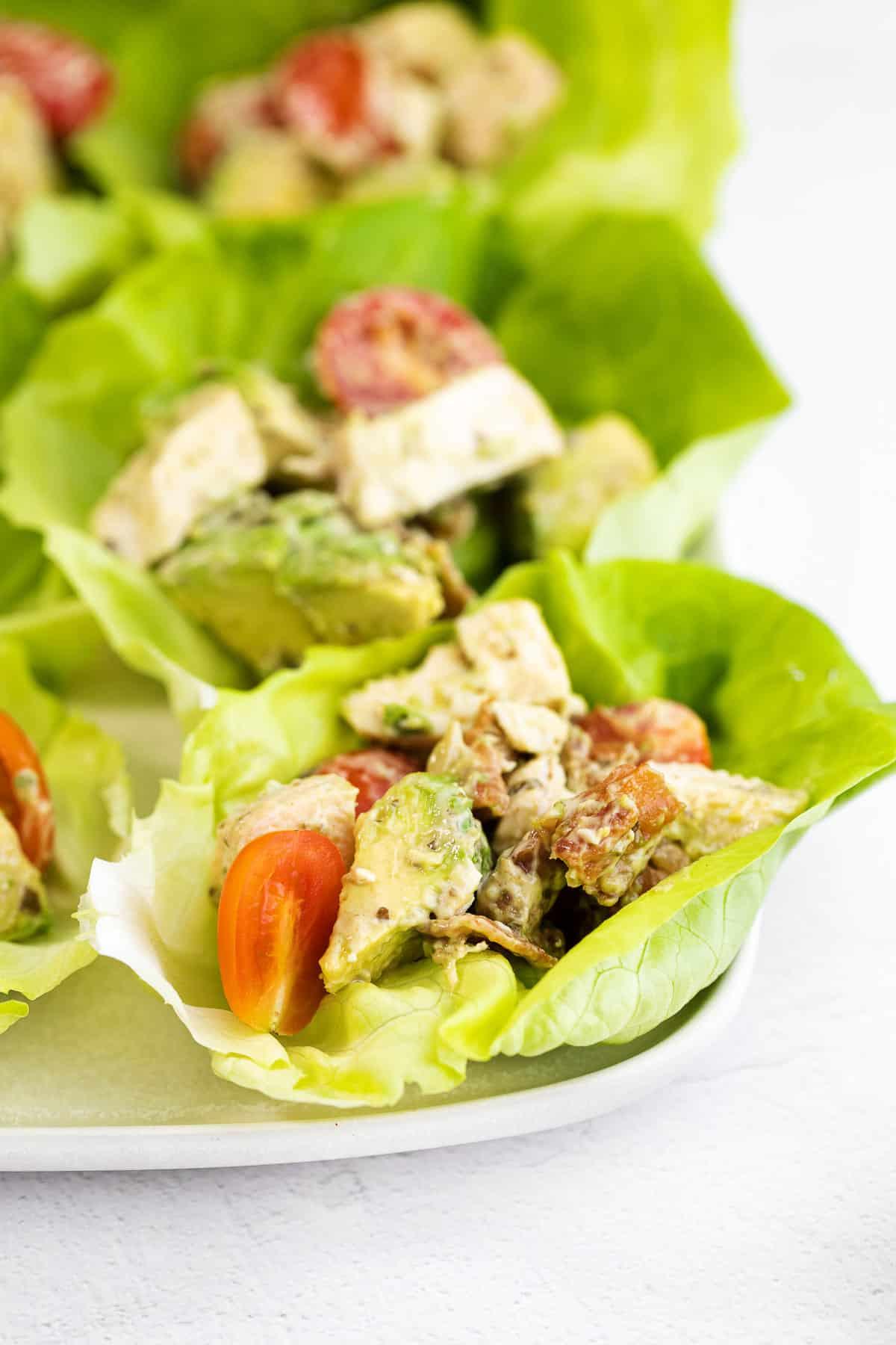 lettuce wraps with pesto chicken salad - pesto, chicken, tomato, avocado, mayo, and pesto