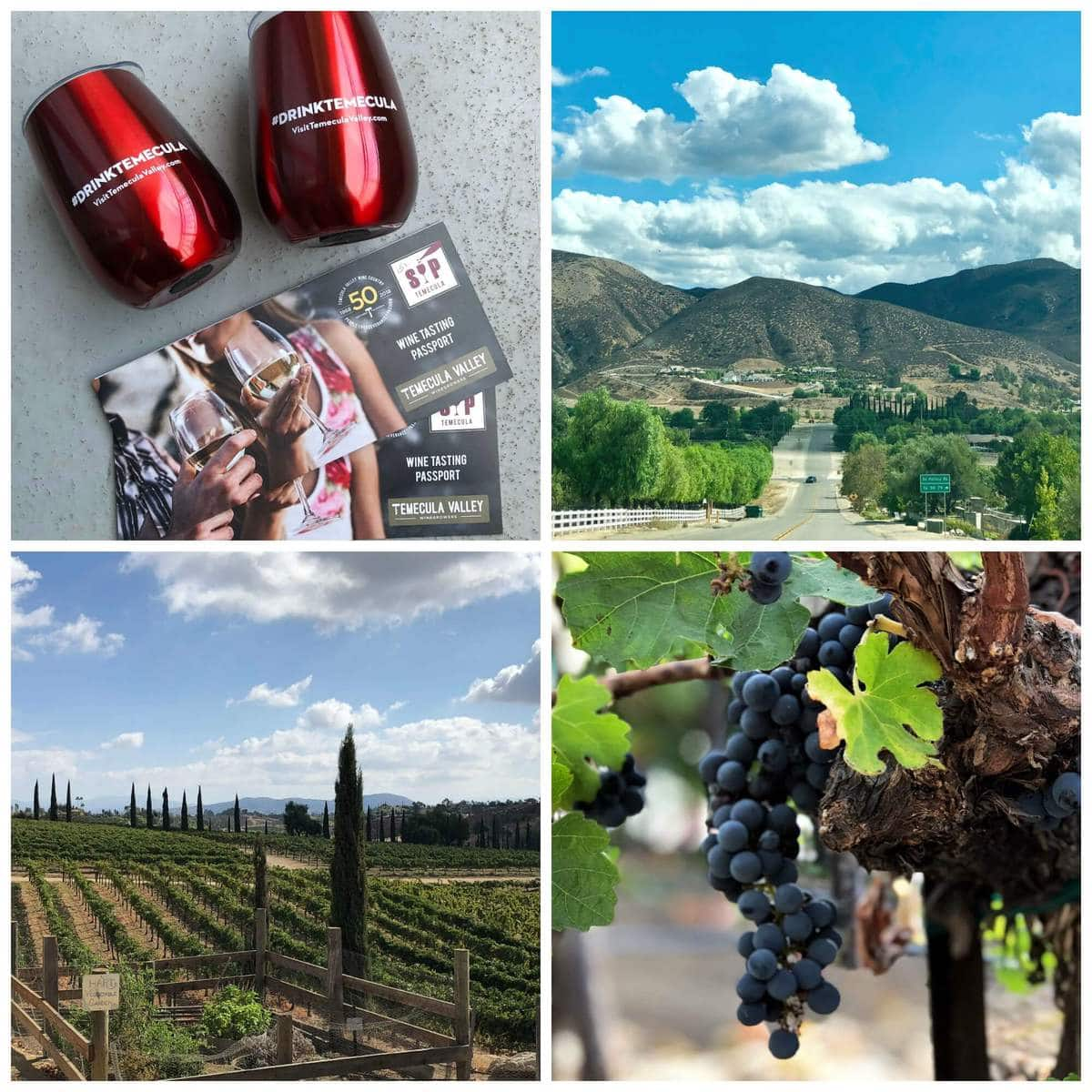 Things to do in Temecula - Wine Tasting | Peace Love and Low Carb