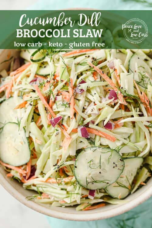 a bowl of paleo coleslaw with broccoli slaw, cucumber, mayo, red onion, dill, garlic, salt and pepper